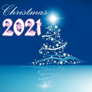 Bestes Glätteisen 2021